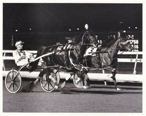 MEADOWLANDS, Harness Horse Race, MAY WINE winner, 1985