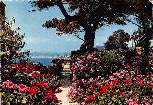 France Jardins Fleuris sur les Bords de la Mediterranee Flowers Postcard