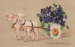 EASTER, PU-1911; Two Sheep pulling egg wagon carrying Violets, Daisies, PFB 8754