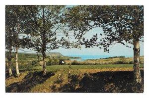 Canada NS Cape Blomidon Countryside Annapolis Valley Nova Scotia Vntg Postcard