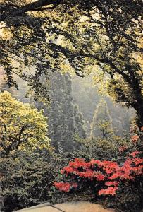 Wales Denbighshire, In Bodnant Gardens, National Trust