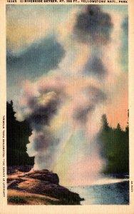 Yellowstone National Park Riverside Geyser Curteich
