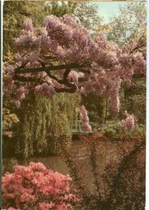 Musee Claude Monet. Giverny, The Water Garden, 1982 used Postcard
