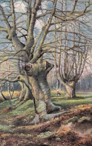 TUCK # 6219 Series , England , 1900-10s ; BURNHAM BEECHES #2