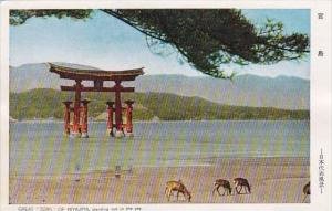 Japan Great Torii Of Miyajima Standing Out In The Sea
