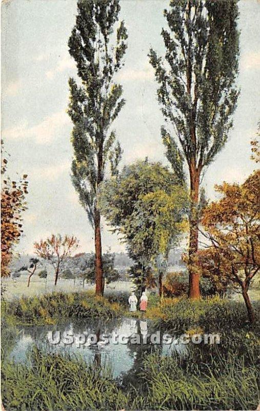 Pond View - Kenoza Lake, New York
