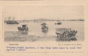 Montevideo - Uruguay, 1901-07 ; En el extremo de la Bahia
