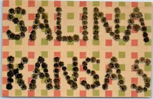 1911 SALINA Kansas Large Letter Postcard Floral Letters / Colorful Background