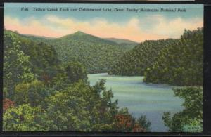 Great Smoky Mountains Nat Park Yellow Creek Knob & Lake colour PC  unused