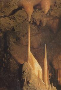 The Stork Bird Stalagmite Derby Treak Cliff Cavern Castleton Postcard