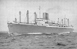 Panama Line Twin Screw Steamships Cristobal Antique Postcard J57862