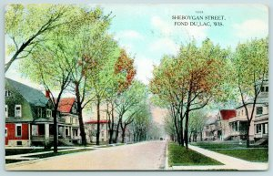 Fond du Lac Wisconsin~Sheboygan Street~Big 2 & 3 Story Homes on Both Sides~1908
