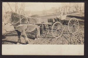 Children's Pony Cart Postcard