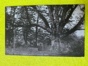 POSTED 1919 POSTCARD - KNIGHTWOOD OAK  NEW FOREST HAMPSHIRE UK (KK40)