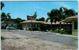 ST. PETERSBURG, Florida  FL   Roadside PELICAN COURT Motel ca 1950s   Postcard
