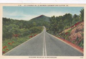 Georgia U S Highway No 23 Between Lakemont and Clayton