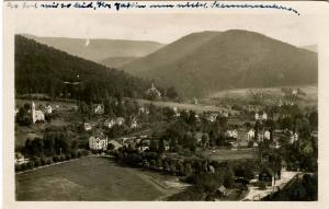 Germany - Herrenalb Schwartzwald. Bird's Eye View - RPPC