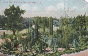 California Los Angeles Cactus Garden Westlake Park