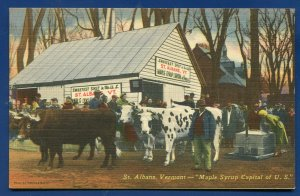St Albans Vermont vt Maple Syrup Capital of US old postcard
