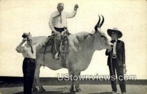 Lone Star, Miss Jeanne Maulsby San Antonio TX Unused