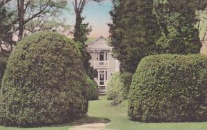 Entrance Through The Magnificent Boxwood Garden Home Of James Monroe Charlott...