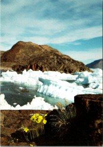Sungaartorsuit Greenland Postcard unused 1989