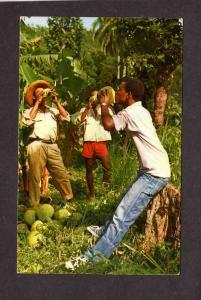 Martinique Coconuts Postcard Carte Postale Caribbean island Lesser Antilles