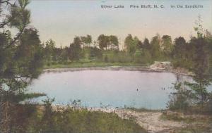North Carolina Pine Bluff Silver Lake In The sandhills Albertype