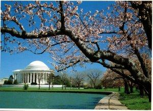 Jefferson Memorial,Washington,DC BIN