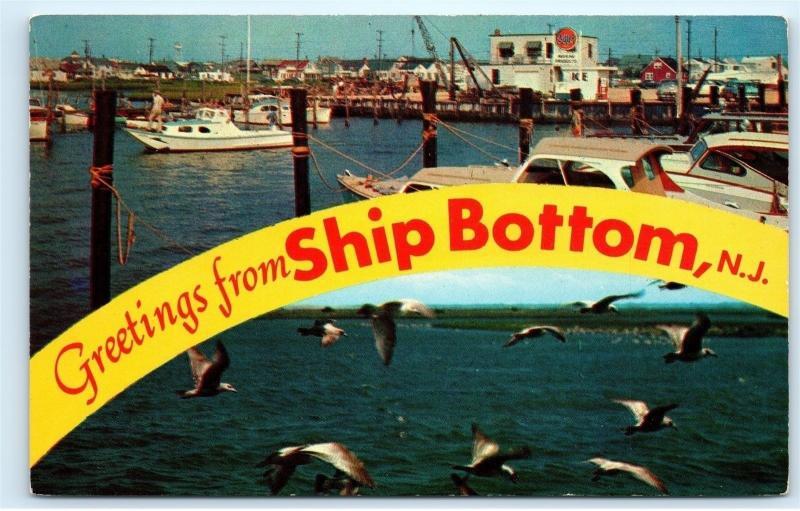*B61 Greetings from Ship Bottom NJ New Jersey Pleasure Boats Seagulls Postcard