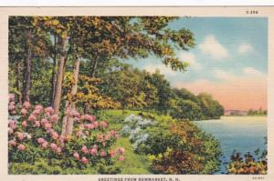 New Hampshire Greetings From Newmarket 1941 Curteich