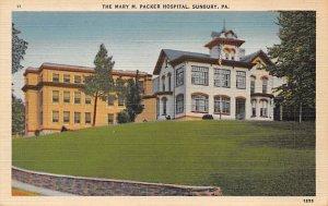 Hospitals Post Card Mary M Packer Hospital Sunbury, Pennsylvania, USA Postcar...
