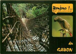 Gabon pont de lianes perroquet gris