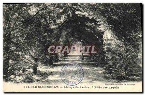 Old Postcard Miss Saint Honorat Lerins Abbey L Allee des Cypres