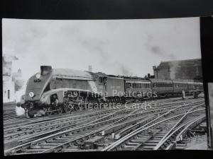 British Railway - Steam Loco SEAGULL No.60033 RP Photocard 140515