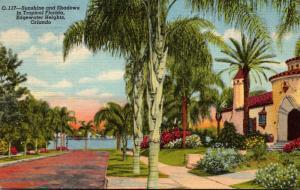 Florida Orlando Edgewater Heights Sunshine and Shadows Curteich