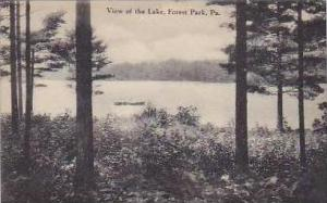 Pennsylvania Forest Park View of The Lake Artvue