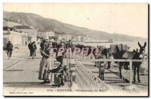 Menton - Promenade du Midi - ane - Old Postcard - donkey