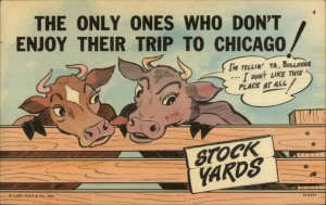 Curt Teich Chicago IL Comic Series Cattle Stock Linen Postcard