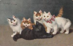 AS: Five alert kittens of many colors, PU-1907