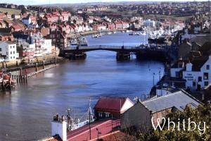 Postcard, Whitby Harbour, North Yorkshire #301