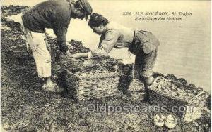 Ile d'oleron, St-Trojan, Occupational Postcard Postcards  Ile d'oleron, St-Tr...