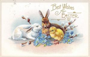 Easter~White Bunny~Brown Rabbit & Chick~Pussy Willows~Forget-Me-Nots~Emboss