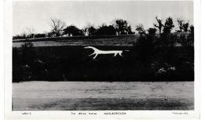 Post Card Wiltshire Marlborough THE WHITE HORSE Frith's Series MBH.9