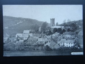 Devon BERRYNARBOR Village - Old Postcard by B.C. Gribble of Combe Martin
