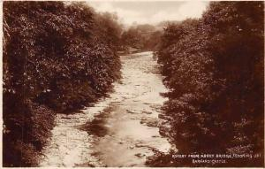 England Barnard Castle, Rokeby from Abbey Bridge (looking up) real photograph
