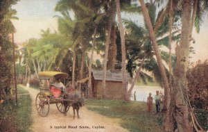 Ceylon A Typical Road Scene Ceylon 04.01