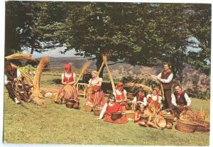 Portugal, Madeira, 1992 used Postcard