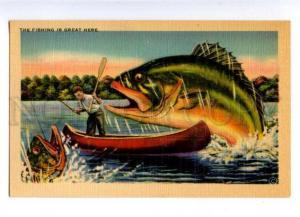 178578 USA Asheville FISHING giant fish vintage postcard