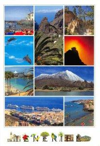 Spain Multi View Postcard, Tenerife FJ6